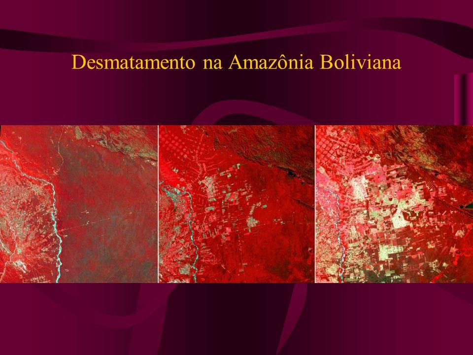 Desmatamento na Amazônia Boliviana