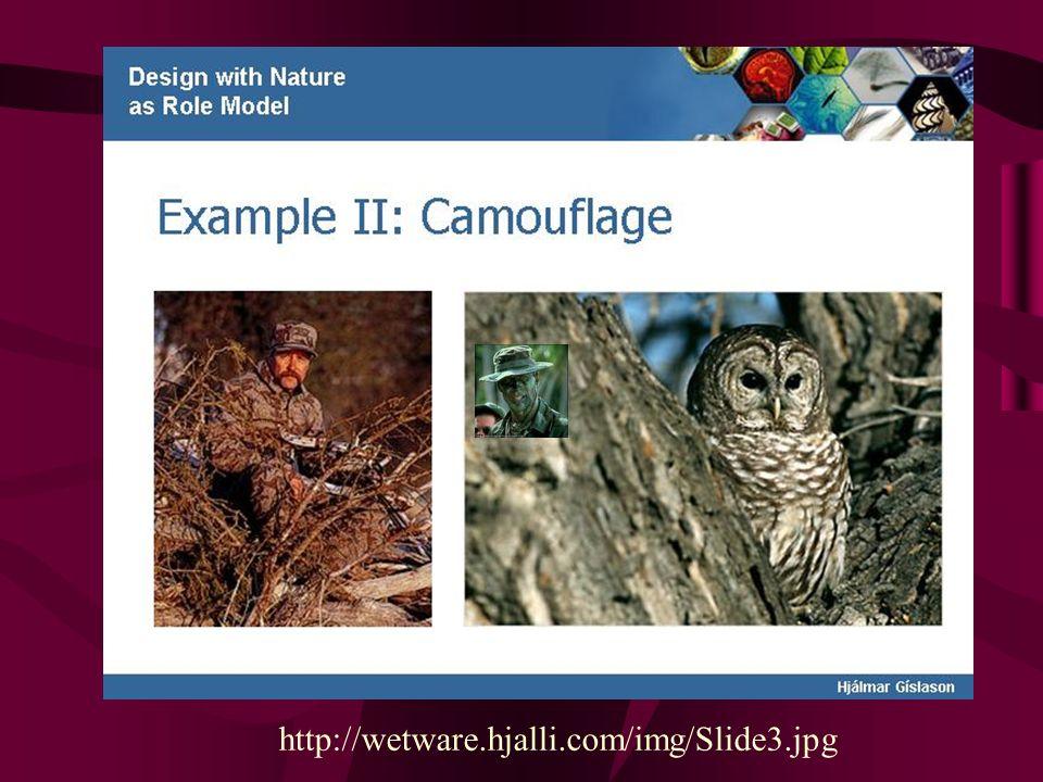 Detecção de Camuflagem