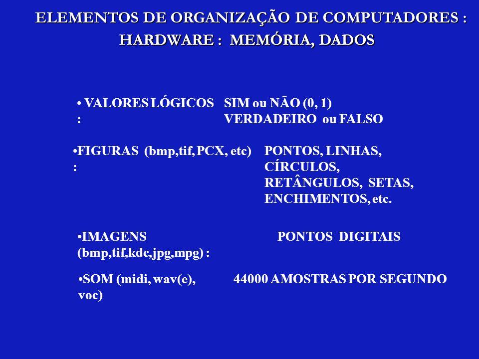 VALORES LÓGICOS : SIM ou NÃO (0, 1) VERDADEIRO ou FALSO FIGURAS (bmp,tif, PCX, etc) : PONTOS, LINHAS, CÍRCULOS, RETÂNGULOS, SETAS, ENCHIMENTOS, etc. I