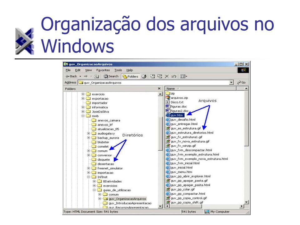 Organização dos arquivos no Windows