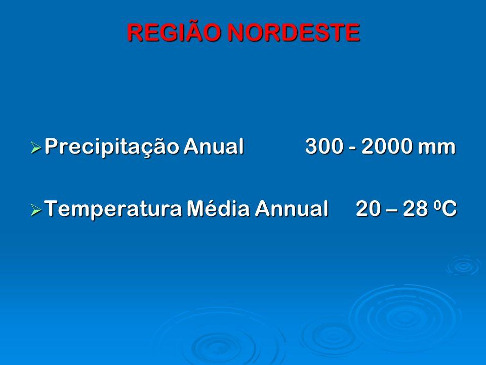 REGIÃO NORDESTE Precipitação Anual 300 - 2000 mm Precipitação Anual 300 - 2000 mm Temperatura Média Annual 20 – 28 0 C Temperatura Média Annual 20 – 2