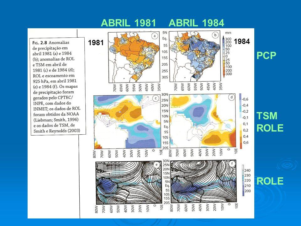 PCP TSM ROLE ABRIL 1981ABRIL 1984 1981 1984