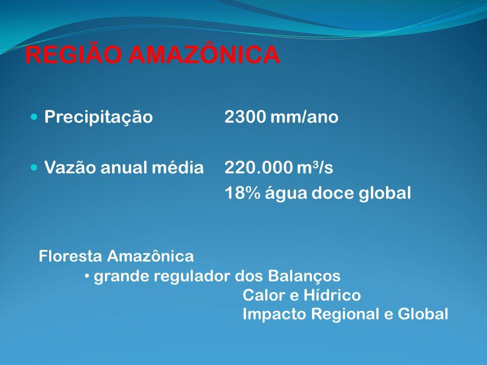 REGIÃO AMAZÔNICA Precipitação2300 mm/ano Vazão anual média220.000 m 3 /s 18% água doce global Floresta Amazônica grande regulador dos Balanços Calor e