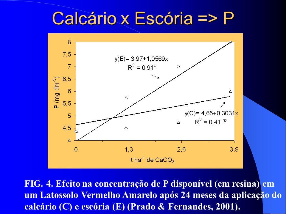 Calcário x Escória => P FIG. 4. Efeito na concentração de P disponível (em resina) em um Latossolo Vermelho Amarelo após 24 meses da aplicação do calc