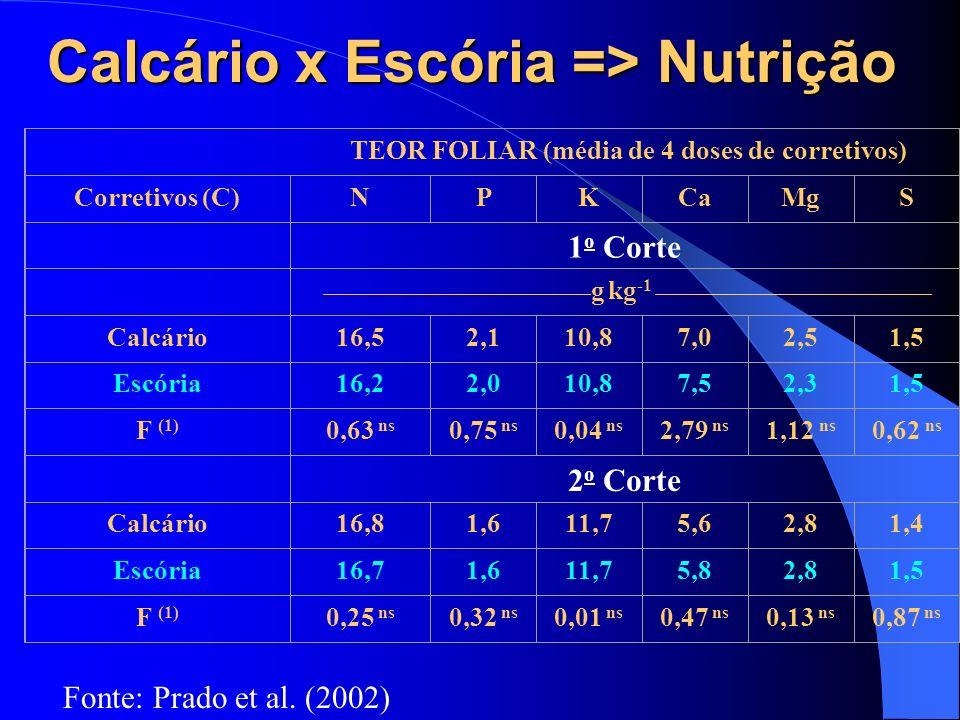 Calcário x Escória => Nutrição TEOR FOLIAR (média de 4 doses de corretivos) Corretivos (C)NPKCaMgS 1 o Corte ______________________________ g kg -1 __