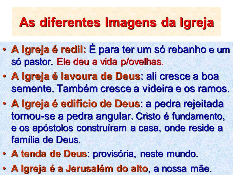 As diferentes Imagens da Igreja A Igreja é redil: É para ter um só rebanho e um só pastor. Ele deu a vida p/ovelhas.A Igreja é redil: É para ter um só