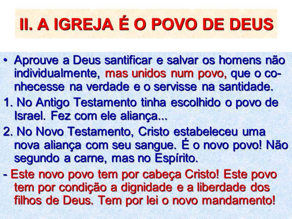 II. A IGREJA É O POVO DE DEUS Aprouve a Deus santificar e salvar os homens não individualmente, mas unidos num povo, que o co- nhecesse na verdade e o