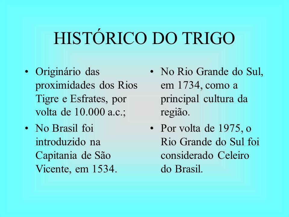 HISTÓRICO DO TRIGO Originário das proximidades dos Rios Tigre e Esfrates, por volta de 10.000 a.c.; No Brasil foi introduzido na Capitania de São Vice