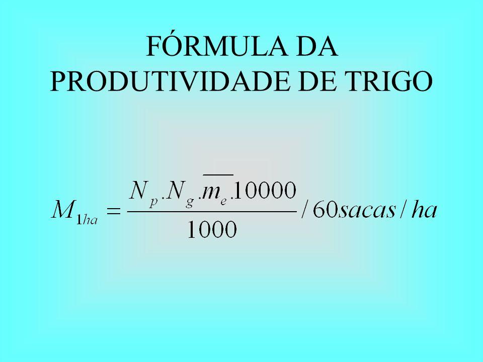 FÓRMULA DA PRODUTIVIDADE DE TRIGO