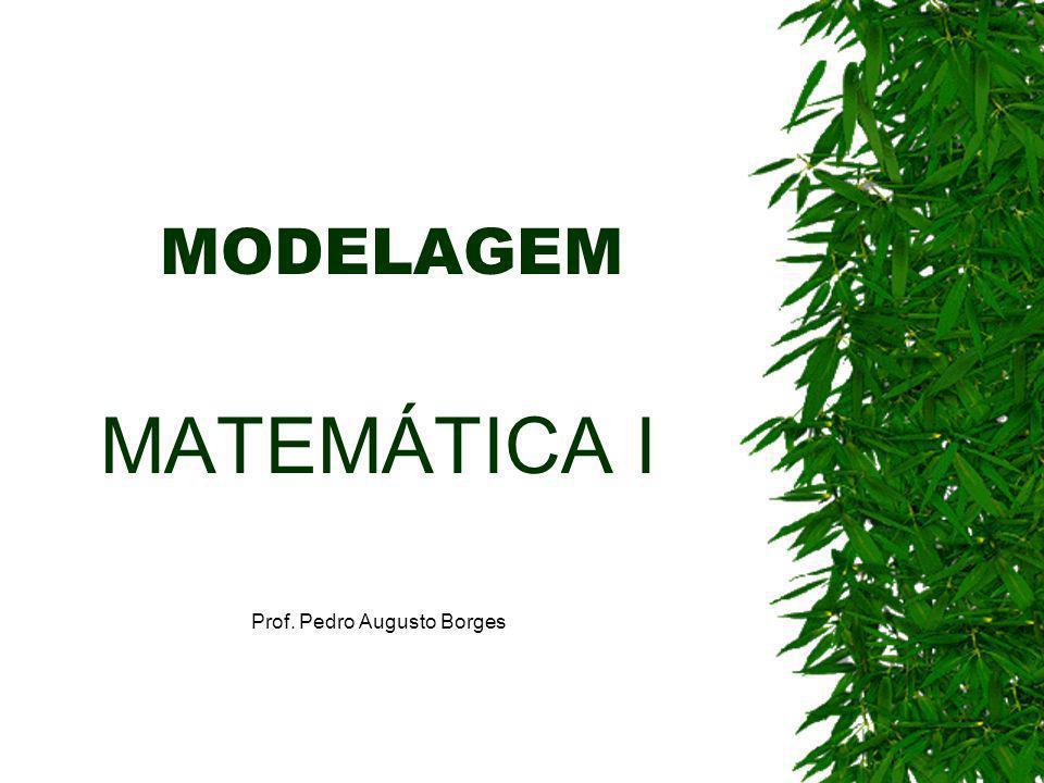 MODELAGEM MATEMÁTICA I Prof. Pedro Augusto Borges