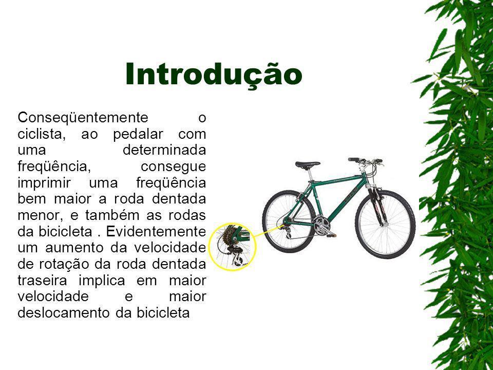 Introdução Conseqüentemente o ciclista, ao pedalar com uma determinada freqüência, consegue imprimir uma freqüência bem maior a roda dentada menor, e
