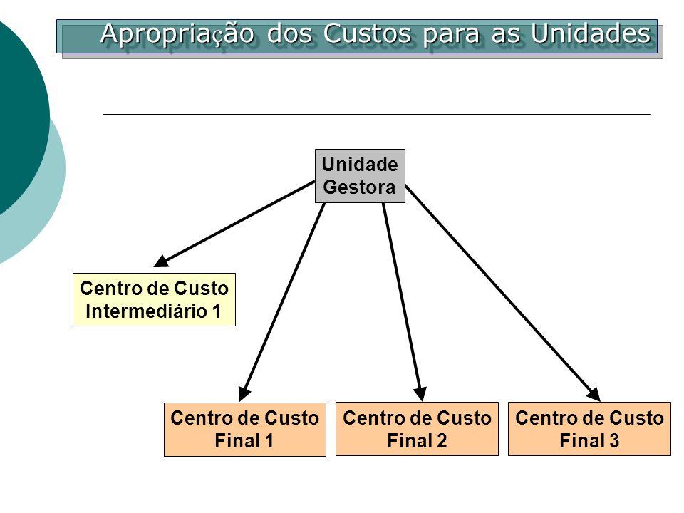 Centro de Custo Final 1 Centro de Custo Intermediário 1 Unidade Gestora Centro de Custo Final 3 Centro de Custo Final 2 Apropria ç ão dos Custos para