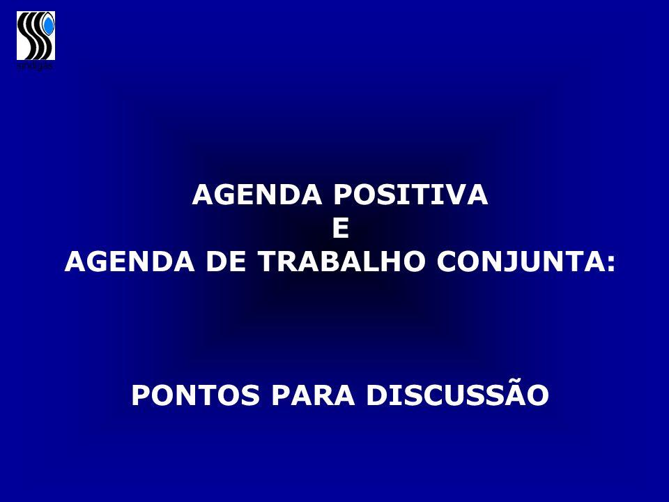 sindigás AGENDA POSITIVA E AGENDA DE TRABALHO CONJUNTA: PONTOS PARA DISCUSSÃO