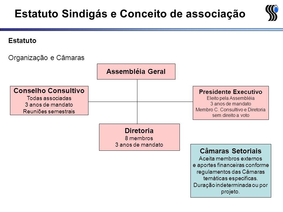 Estatuto Sindigás e Conceito de associação Estatuto Organização e Câmaras Conselho Consultivo Todas associadas 3 anos de mandato Reuniões semestrais D