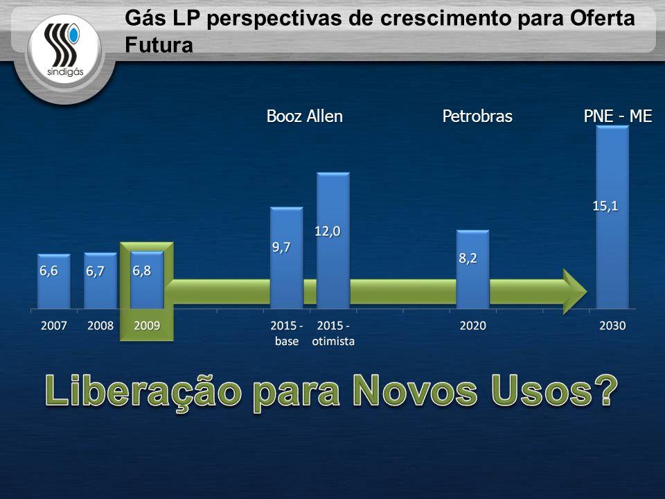 Booz Allen PNE - ME Petrobras Gás LP perspectivas de crescimento para Oferta Futura