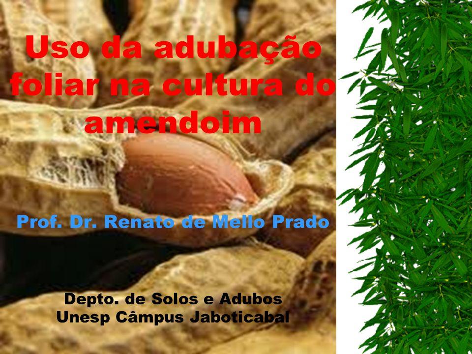 Uso da adubação foliar na cultura do amendoim Prof. Dr. Renato de Mello Prado Depto. de Solos e Adubos Unesp Câmpus Jaboticabal