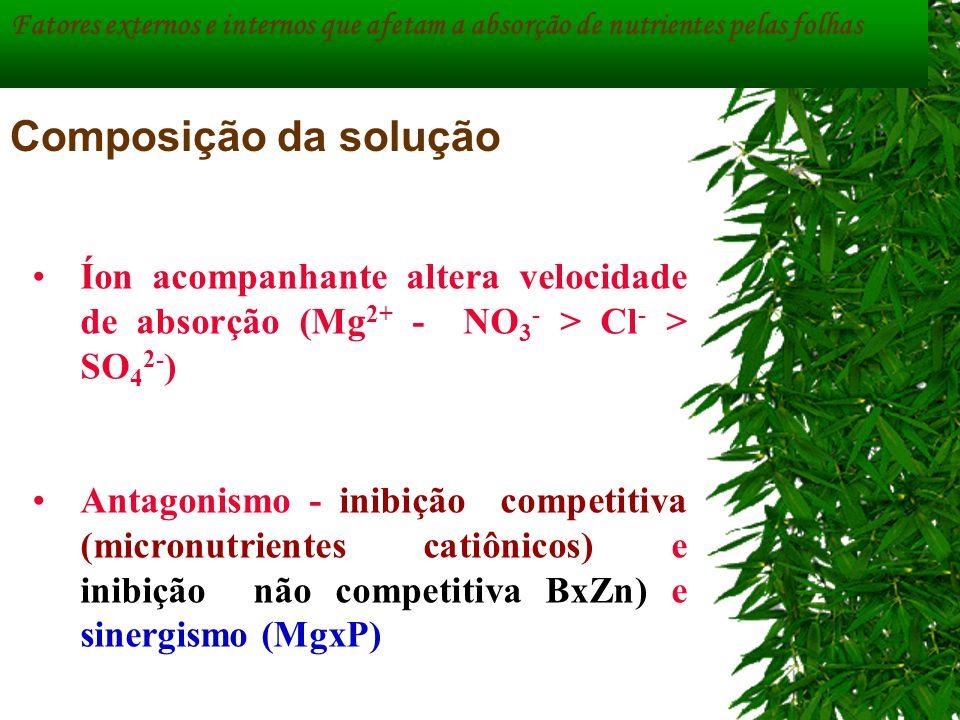 Fatores externos e internos que afetam a absorção de nutrientes pelas folhas Composição da solução Íon acompanhante altera velocidade de absorção (Mg