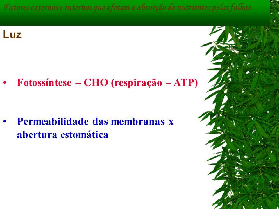 Fatores externos e internos que afetam a absorção de nutrientes pelas folhas Luz Fotossíntese – CHO (respiração – ATP) Permeabilidade das membranas x