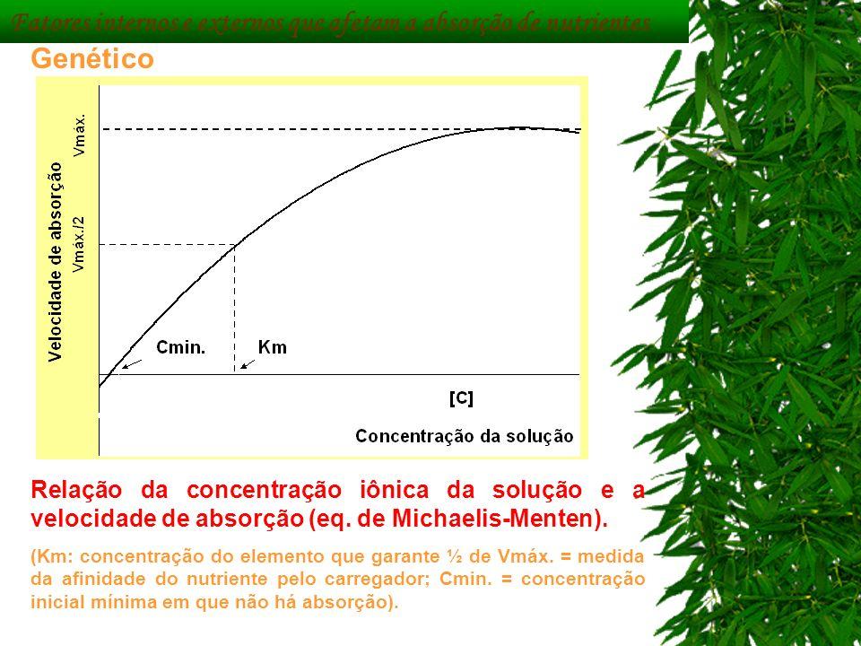 Fatores internos e externos que afetam a absorção de nutrientes Genético Relação da concentração iônica da solução e a velocidade de absorção (eq. de
