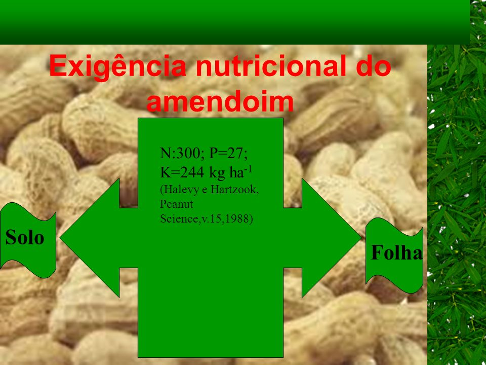 Exigência nutricional do amendoim N:300; P=27; K=244 kg ha -1 (Halevy e Hartzook, Peanut Science,v.15,1988) Solo Folha