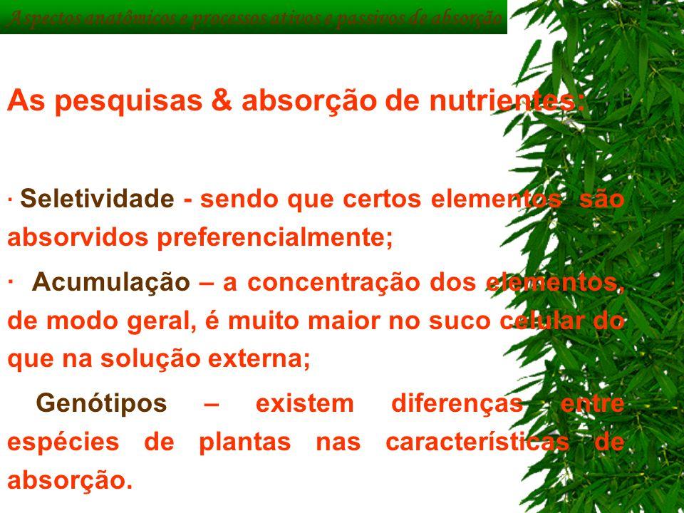 Aspectos anatômicos e processos ativos e passivos de absorção As pesquisas & absorção de nutrientes: · Seletividade - sendo que certos elementos são a