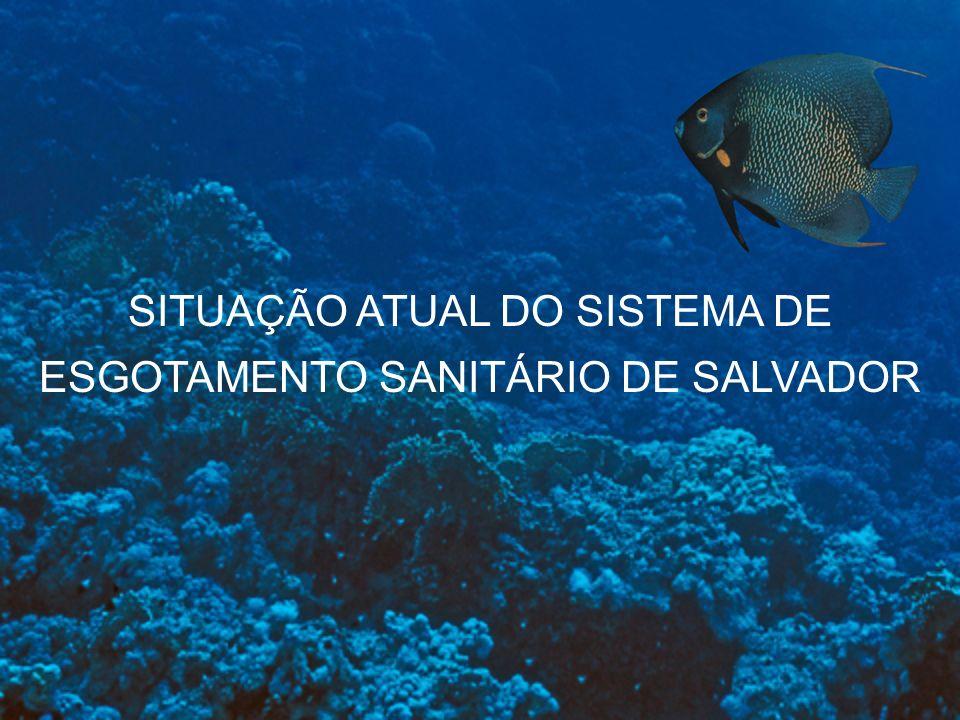 O Programa de Monitoramento da Qualidade da Água, do Sedimento e da Biota Aquático do Corpo Receptor do Sistema Jaguaribe tem como objetivo identificar futuras alterações no ambiente marinho associadas à disposição oceânica dos esgotos.