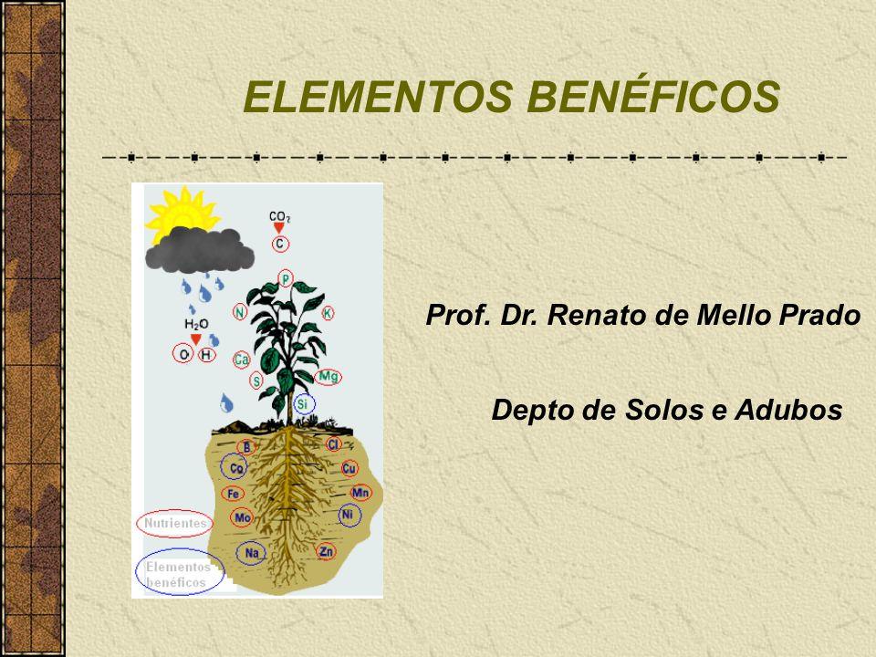 ELEMENTOS BENÉFICOS Prof. Dr. Renato de Mello Prado Depto de Solos e Adubos