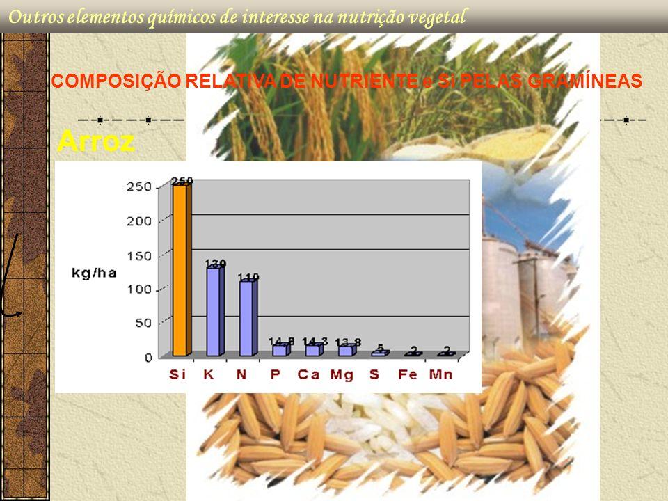COMPOSIÇÃO RELATIVA DE NUTRIENTE e Si PELAS GRAMÍNEAS Arroz Outros elementos químicos de interesse na nutrição vegetal