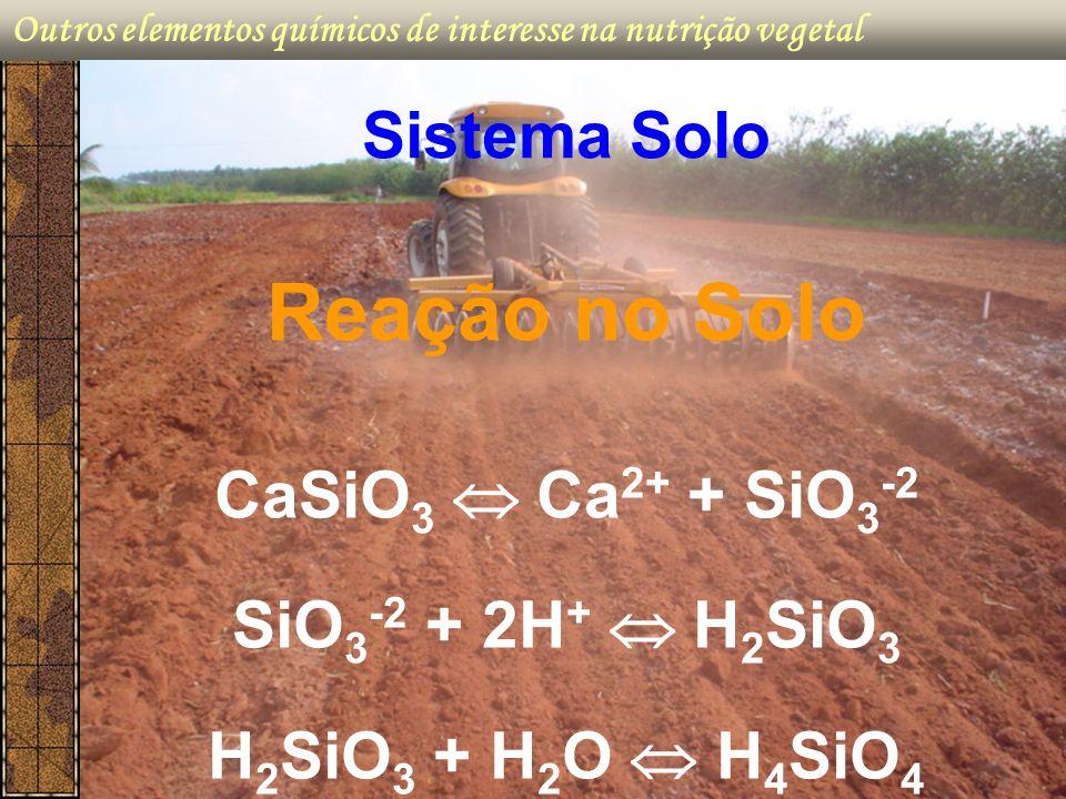 Outros elementos químicos de interesse na nutrição vegetal Reação no Solo CaSiO 3 Ca 2+ + SiO 3 -2 SiO 3 -2 + 2H + H 2 SiO 3 H 2 SiO 3 + H 2 O H 4 SiO