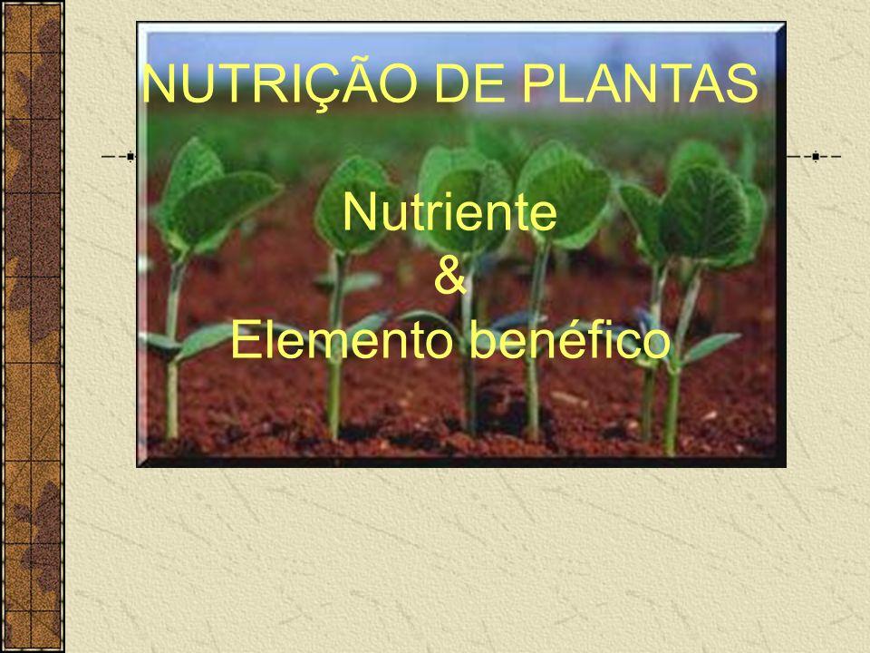 Latossolo Vermelho distrófico (V=50%) Mauad et al. (2003) Silicato em cereais: arroz