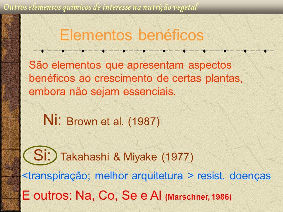 H 4 SiO 4 Outros elementos químicos de interesse na nutrição vegetal