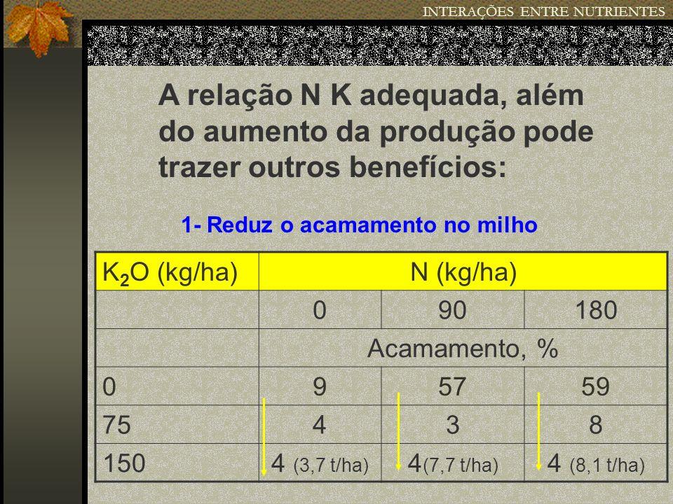 INTERAÇÕES ENTRE NUTRIENTES A relação N K adequada, além do aumento da produção pode trazer outros benefícios: 1- Reduz o acamamento no milho K 2 O (k