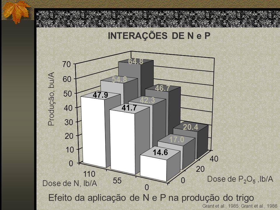 Dose de N, lb/A Dose de P 2 O 5,lb/A Produção, bu/A 110 55 0 0 20 40 0 10 20 30 40 50 60 70 Grant et al., 1985; Grant et al., 1986 64.8 54.8 47.9 46.7