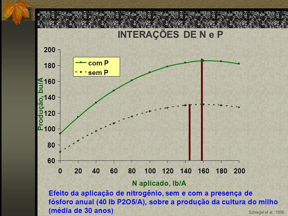 Schlegel et al., 1996 60 80 100 120 140 160 180 200 020406080100120140160180200 N aplicado, lb/A Produção, bu/A com P sem P Efeito da aplicação de nit