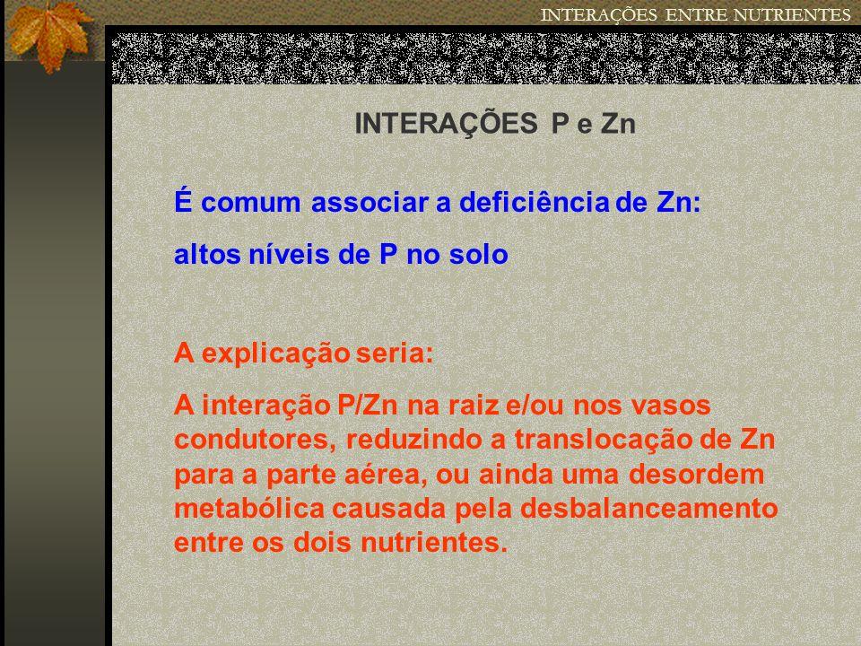 INTERAÇÕES ENTRE NUTRIENTES INTERAÇÕES P e Zn É comum associar a deficiência de Zn: altos níveis de P no solo A explicação seria: A interação P/Zn na