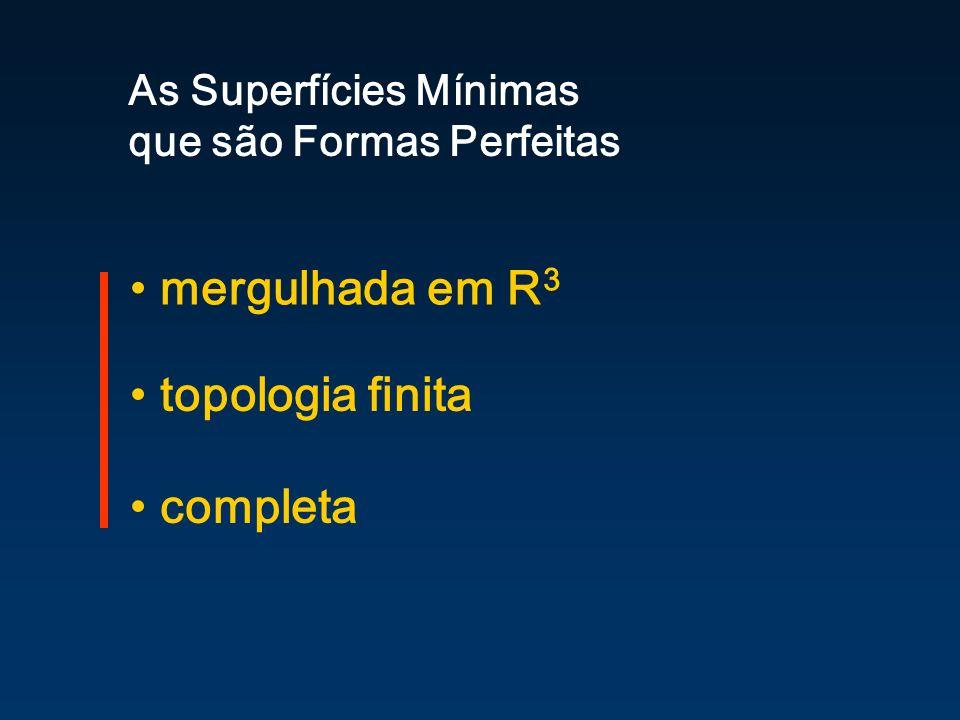 mergulhada em R 3 As Superfícies Mínimas que são Formas Perfeitas topologia finita completa