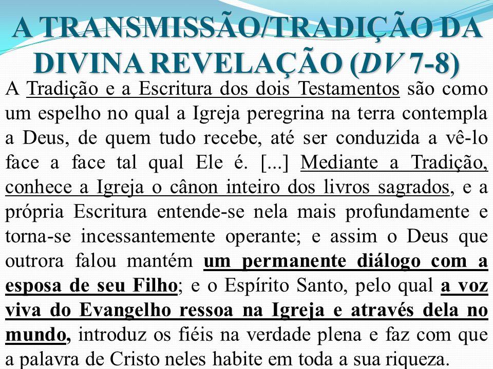 A TRANSMISSÃO/TRADIÇÃO DA DIVINA REVELAÇÃO (DV 7-8) A Tradição e a Escritura dos dois Testamentos são como um espelho no qual a Igreja peregrina na te