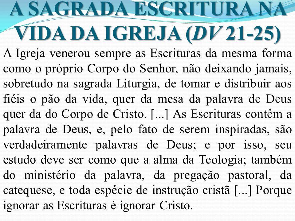 A SAGRADA ESCRITURA NA VIDA DA IGREJA (DV 21-25) A Igreja venerou sempre as Escrituras da mesma forma como o próprio Corpo do Senhor, não deixando jam