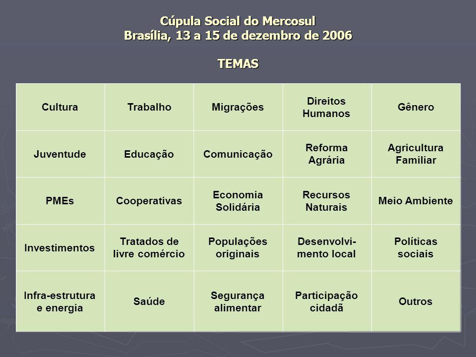 Cúpula Social do Mercosul Brasília, 13 a 15 de dezembro de 2006 TEMAS Outros Participação cidadã Segurança alimentar Saúde Infra-estrutura e energia P
