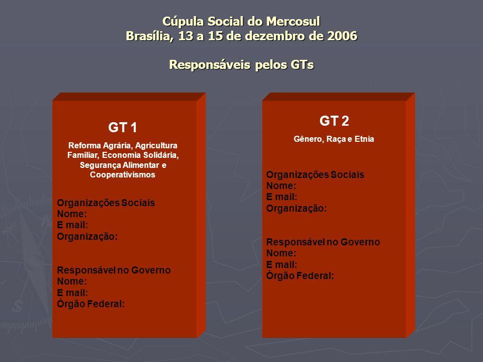 Cúpula Social do Mercosul Brasília, 13 a 15 de dezembro de 2006 Responsáveis pelos GTs Organizações Sociais Nome: E mail: Organização: Responsável no