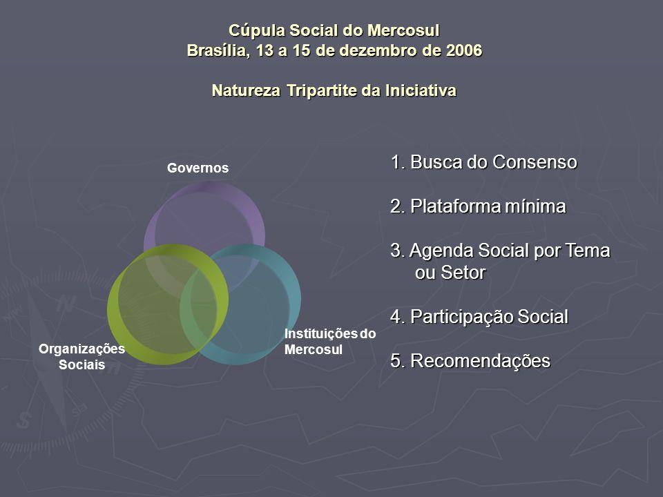 Organizações Sociais Cúpula Social do Mercosul Brasília, 13 a 15 de dezembro de 2006 Natureza Tripartite da Iniciativa Instituições do Mercosul 1.
