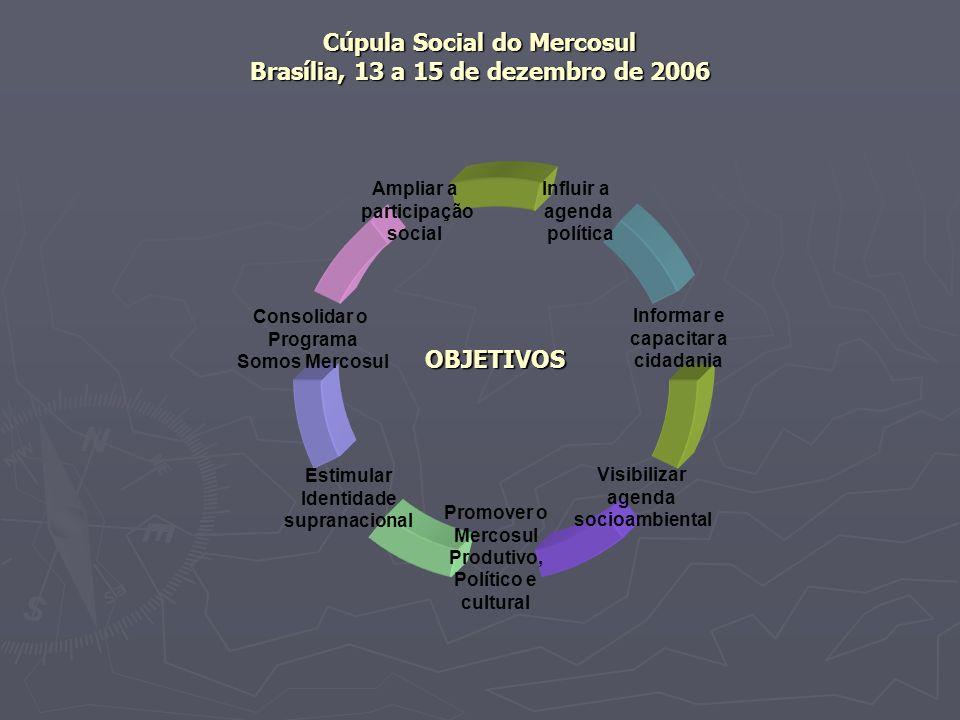 Cúpula Social do Mercosul Brasília, 13 a 15 de dezembro de 2006 Ampliar a participação social Promover o Mercosul Produtivo, Político e cultural Consolidar o Programa Somos Mercosul Influir a agenda política Informar e capacitar a cidadania Estimular Identidade supranacional Visibilizar agenda socioambiental OBJETIVOS