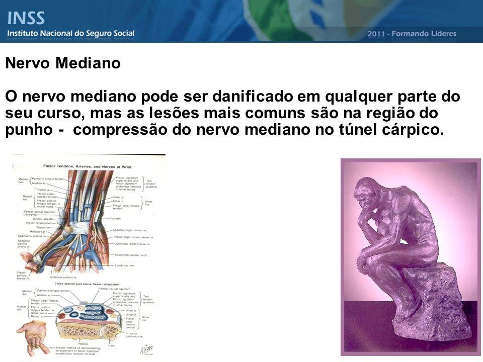 Nervo Mediano O nervo mediano pode ser danificado em qualquer parte do seu curso, mas as lesões mais comuns são na região do punho - compressão do ner