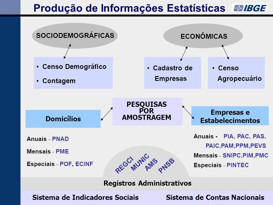 Produção de Informações Estatísticas SOCIODEMOGRÁFICAS ECONÔMICAS Censo Demográfico Contagem Cadastro de Empresas Censo Agropecuário Anuais - PNAD Mensais - PME Especiais - POF, ECINF Anuais - PIA, PAC, PAS, PAIC,PAM,PPM,PEVS Mensais - SNIPC,PIM,PMC Especiais - PINTEC Domicílios PESQUISAS POR AMOSTRAGEM REGCI MUNICAMS PNSB Registros Administrativos Sistema de Indicadores SociaisSistema de Contas Nacionais Empresas e Estabelecimentos