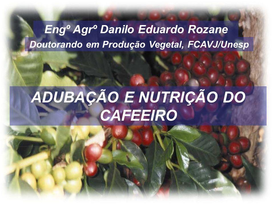 Engº Agrº Danilo Eduardo Rozane Doutorando em Produção Vegetal, FCAVJ/Unesp ADUBAÇÃO E NUTRIÇÃO DO CAFEEIRO