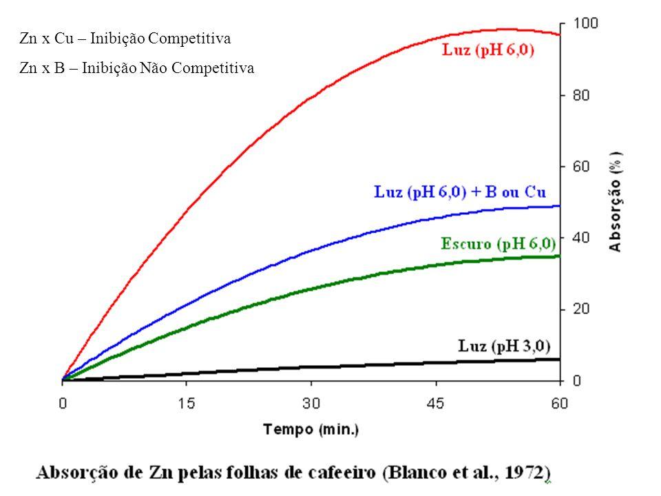 Zn x Cu – Inibição Competitiva Zn x B – Inibição Não Competitiva