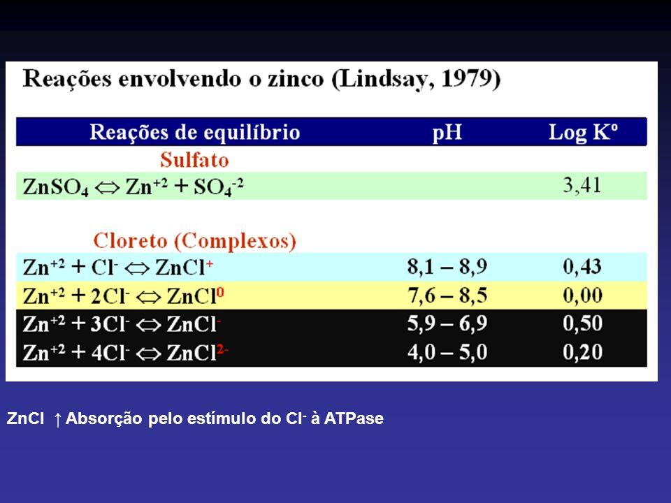 ZnCl Absorção pelo estímulo do Cl - à ATPase