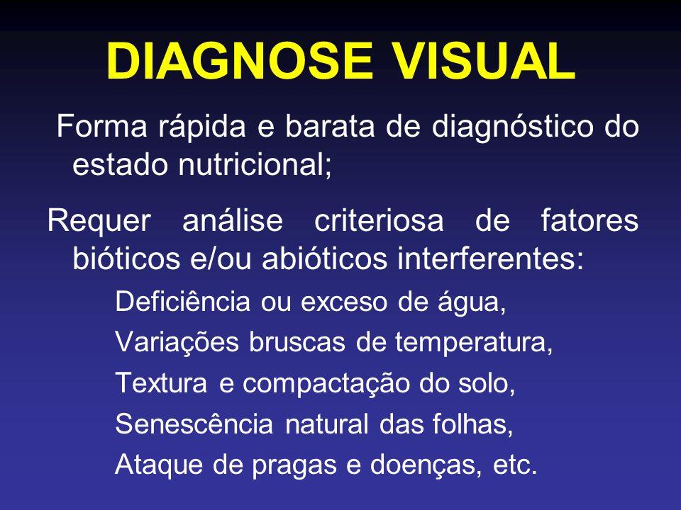 DIAGNOSE VISUAL Forma rápida e barata de diagnóstico do estado nutricional; Requer análise criteriosa de fatores bióticos e/ou abióticos interferentes