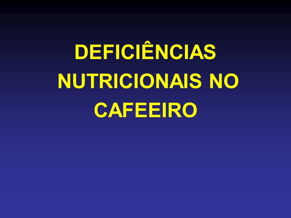 DEFICIÊNCIAS NUTRICIONAIS NO CAFEEIRO