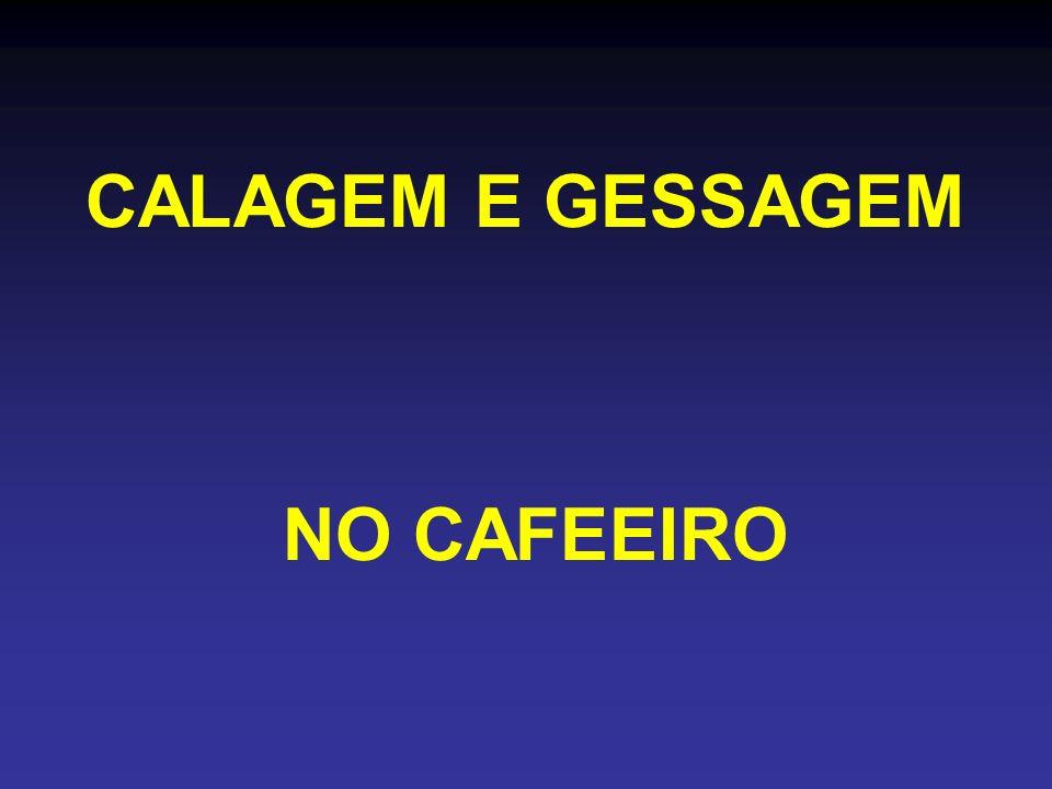 CALAGEM E GESSAGEM NO CAFEEIRO